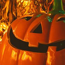 Vignette_HalloweenGuidée